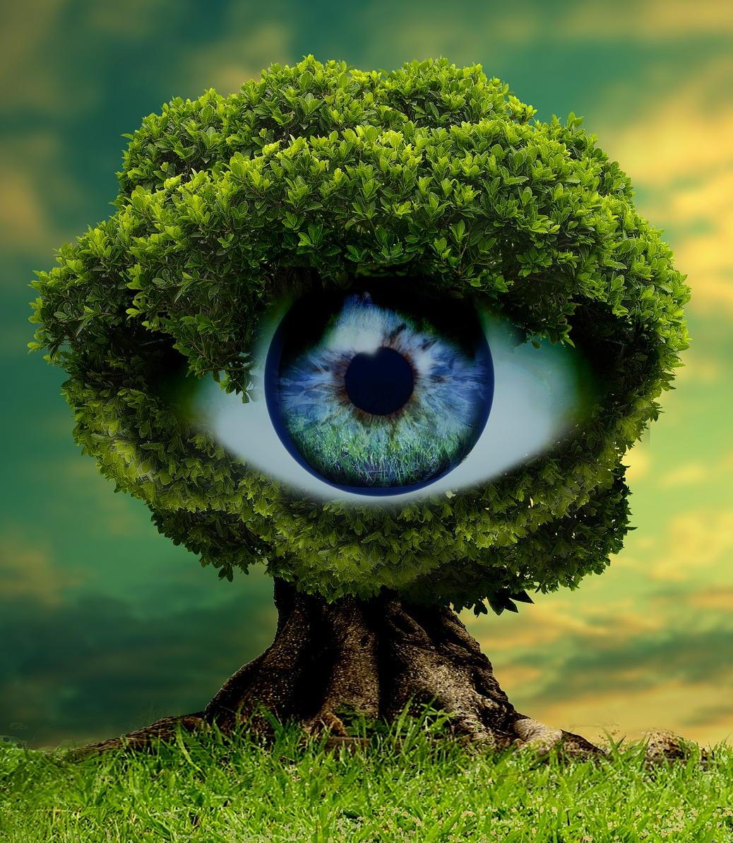 Contact Form eyeball